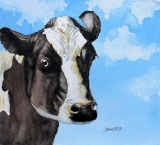 'Cock an Ear' Friesian cow  by Barbara King watercolour painting