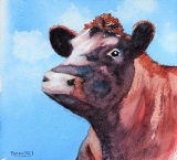 little red bull by Barbara King watercolour painting